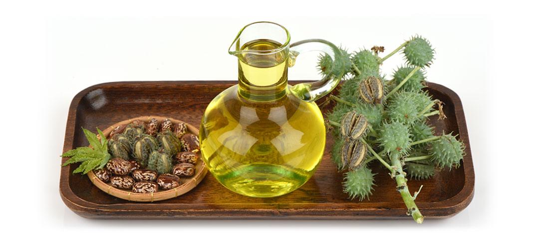 Castor Oil & Specialty Derivatives - Paramount Colors